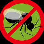 小黑蚊資訊服務中心